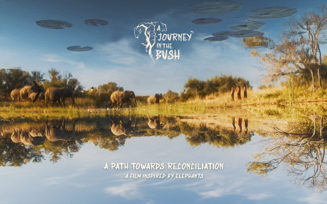"""A Journey In The Bush"" – Bientôt en ligne"